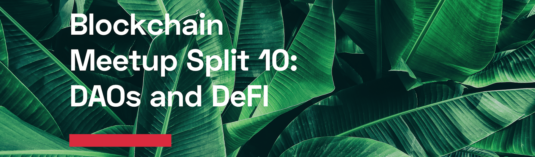 10. Split Blockchain Meetup: DAOs and DeFI