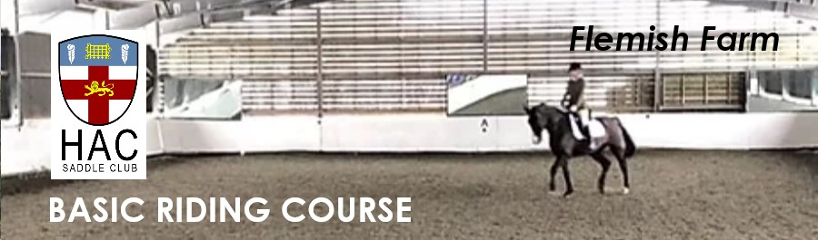 Intro Riding Course