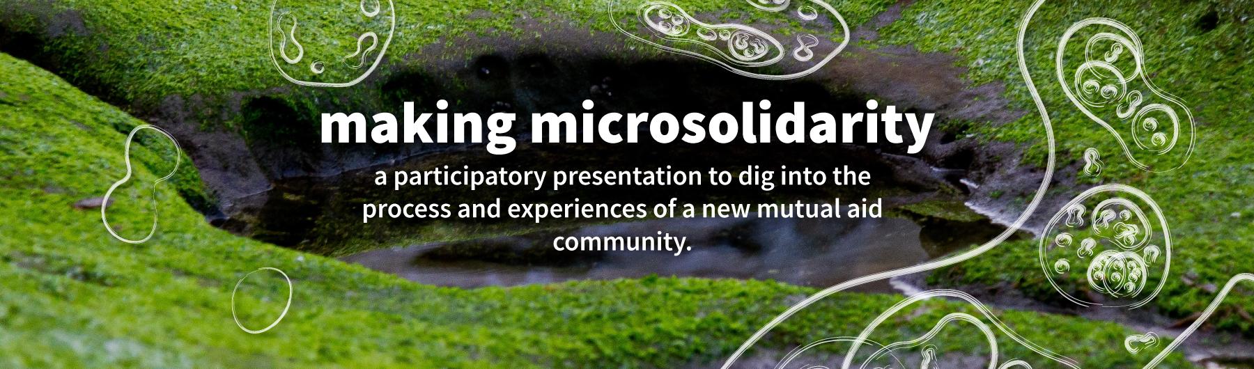 Making Microsolidarity in Maastricht