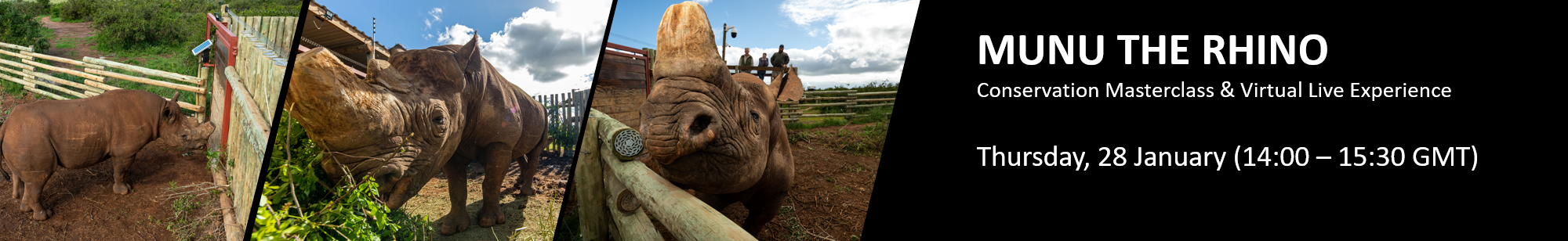 Munu the Rhino - Conservation Masterclass