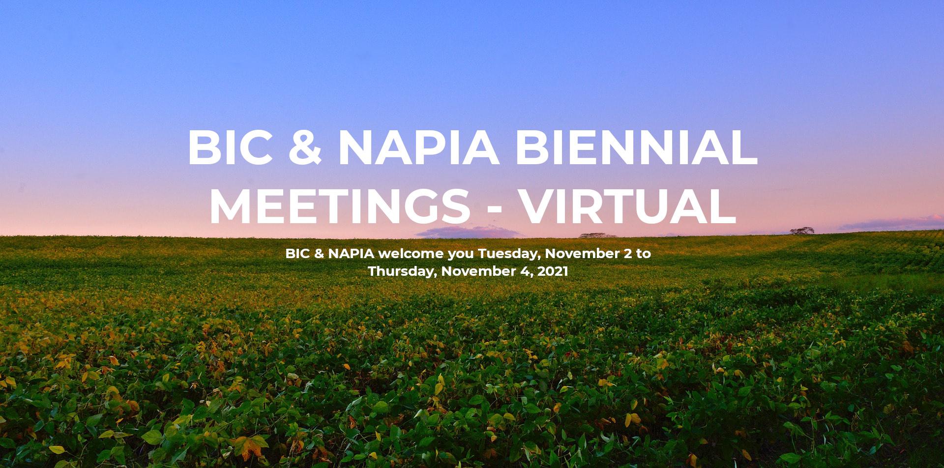 BIC & NAPIA Biennial Meetings - Virtual